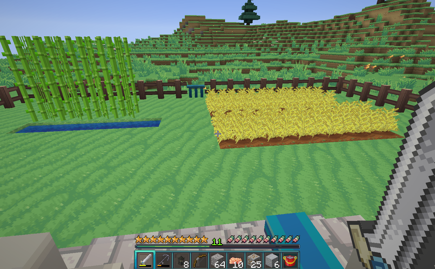 A view of crops in minecraft with the annahstas Resource Pack textures