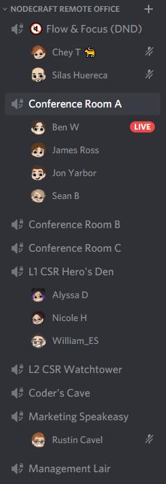 Discord Remote Team
