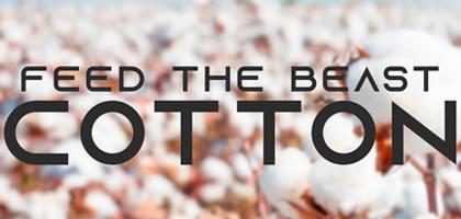 FTB: Cotton Server Hosting